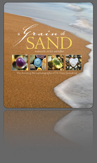 A Grain of Sand by Dr. Gary Greenberg