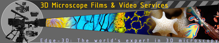 Video Microscopy Services film through the microscope microscopic movies